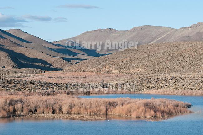 Bilk Creek Reservoir and Bilk Creek Range, Nev.