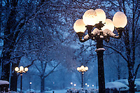 Night time lampposts in snow (photo by Megan Bean / © Mississippi State University)