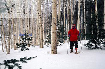 Elderly snowshoeing, White Mountains, New Hampshire, USA