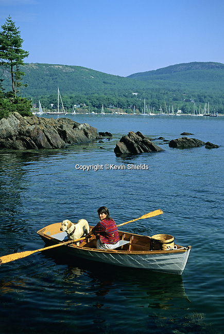 Woman with her dog rowing near Curtis Island, Camden, Maine, USA