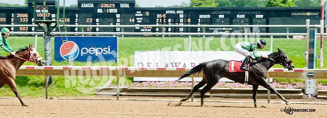 Miss Dayna Lee winning at Delaware Park on 6/15/13