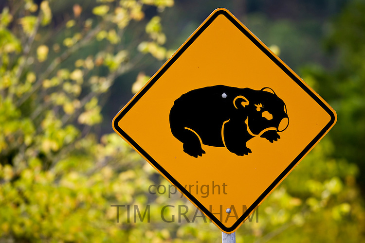 Wombat road warning sign, near Wollombi, Australia