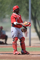 Cincinnati Reds catcher Shedric Long (30) during an Instructional League game against the Texas Rangers on October 7, 2013 at Goodyear Training Complex in Goodyear, Arizona.  (Mike Janes/Four Seam Images)