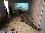 WHORLED EXPLORATIONS - Kochi Muziris Biennale 2014 - Dinh Q Le work.