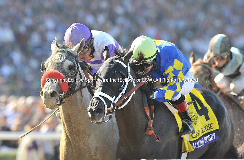 SHANGHAI BOBBY, ridden by Rosie Napravnik and trained by Todd Pletcher, winsthe Breeders Cup Juvenile. November 3, 2012 at Santa Anita