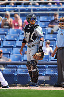 Hartford Yard Goats catcher Jan Vazquez (6) looks to the bench for the sign during a game against the Binghamton Rumble Ponies on July 9, 2017 at NYSEG Stadium in Binghamton, New York.  Hartford defeated Binghamton 7-3.  (Mike Janes/Four Seam Images)