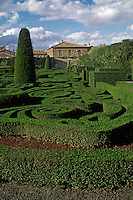Sculpted hedges at VILLA LANTE (Italian Renaissance Garden, 1566), VITERBO - TUSCANY, ITALY