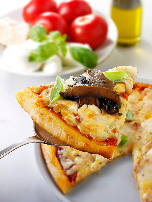 Italian mushroom and cheese Pizza slice photo. Funky Stock pizzas photos