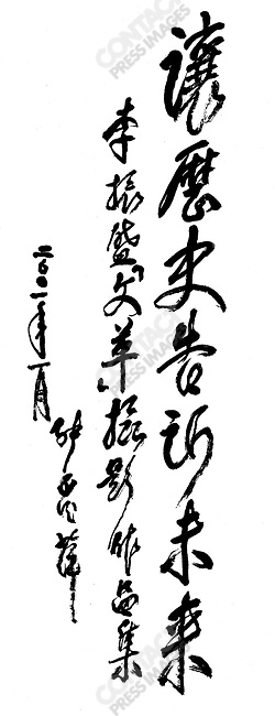 """Calligraphy by General Zhang Aiping former Vice Premier and Defense Minister: """"Let History tell the future through Li Zhensheng's photographs of the Cultural Revolution"""""""