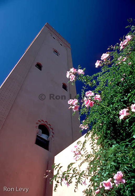 Mosque minaret, roses, Morocco, Africa