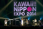 "Tokyo, Japan - The idol group Akaiko-en performs at ""Kawaii!! Nippon Expo 2014"" in the International Convention Complex Makuhari Messe on May 10, 2014. Several famous Idols such as Tomomi Itano, Kyary Pamyu Pamyu and Harayuku models attend the Kawaii!! Nippon Expo 2014 (Photo by Rodrigo Reyes Marin/AFLO)"