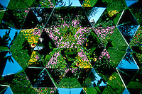 Kaliedescope flower pattern.