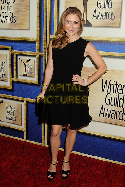 1 February 2014 - Los Angeles, California - Sasha Alexander. 2014 Writers Guild Awards West Coast held at the JW Marriott Hotel.  <br /> CAP/ADM/BP<br /> &copy;Byron Purvis/AdMedia/Capital Pictures