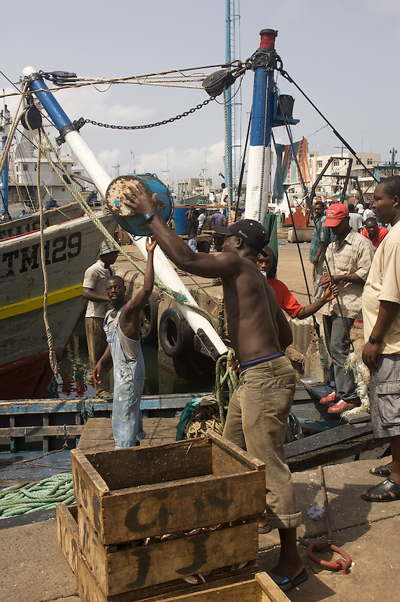 Unloading fish, Tema, Ghana..Photograph by Peter E. Randall