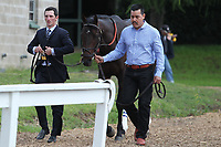 HOT SPRINGS, AR - APRIL 14: Trainer Rodolphe Brisset walking Quip from the barn to the paddock before the Arkansas Derby at Oaklawn Park on April 14, 2018 in Hot Springs, Arkansas. (Photo by Justin Manning/Eclipse Sportswire/Getty Images)