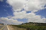 Israel, Upper Galilee, Road 899 by the orchards of Kibbutz Sasa