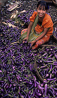 A girl vendor in the main Yangon Market, sorting and selling Eggplants,Burma, Myanmar