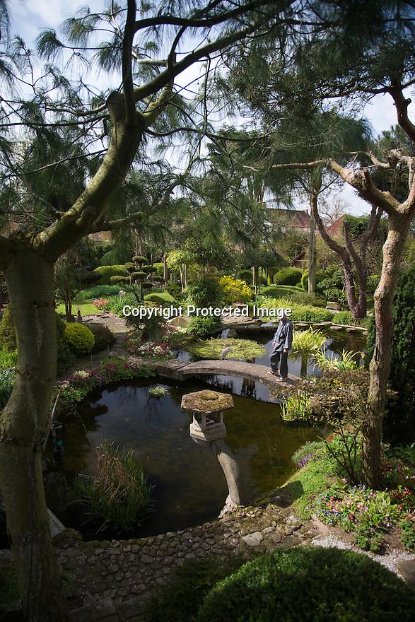 22/04/16<br /> <br /> Japanese garden, near Newark, Nottinghamshire.<br /> <br /> Full story here:<br /> <br /> http://www.fstoppress.com/articles/japanese-gardens-in-the-heart-of-england/<br /> <br /> .Rights Reserved: F Stop Press Ltd. +44(0)1335 418365   www.fstoppress.com.