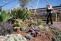 Temporary landscaping created for the conference by Design Ecology. West Coast Green is the nation's largest conference and expo dedicated to green innovation, building, design and technology. The conference featured over 300 exhibitors, 125 speakers, and 80 education and networking sessions. Fort Mason, San Francisco, California, USA. Photo taken October 2, 2009.