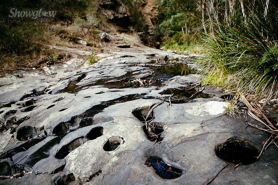 Image Ref: CA281<br /> Location: Sheoak Hike, Great Ocean Road<br /> Date of Shot: 26.04.18