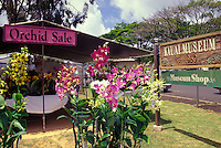 An orchid sale at Kauai Museum in Lihue and the museum's sign.  The museum showcases Kauai history and artifacts from earliest times to the present