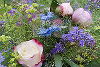 Flower arrangement of Nepeta catmint, Nigella love-in-a-mist, Alchemilla Lady's mantle, Rosa pink picotee edged cream roses, pink peony Paeonia arrangement
