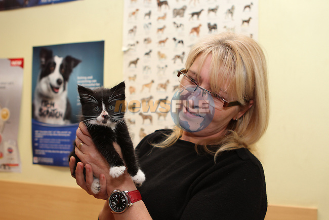 Sarah Everard with her new kitten at the Cat Rehoming Day at Duleek Veterinary Clinic...(Photo credit should read Jenny Matthews/NEWSFILE)...