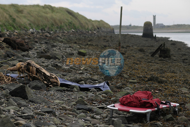 Remains of Body Found at the Mouth of the River Boyne at Baltray..(Photo credit should read Jenny Matthews www.newsfile.ie)....This Picture has been sent you under the condtions enclosed by:.Newsfile Ltd..The Studio,.Millmount Abbey,.Drogheda,.Co Meath..Ireland..Tel: +353(0)41-9871240.Fax: +353(0)41-9871260.GSM: +353(0)86-2500958.email: pictures@newsfile.ie.www.newsfile.ie.