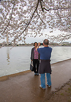 Washington DC, March 20,2020 USA: Cherry Blossoms are at their peak along the Tidal Basin in Washington DC. In spite of suggestions that people avoid crowds, tourists are still flocking to the site  <br /> CAP/MPI/PYL<br /> ©PYL/MPI/Capital Pictures