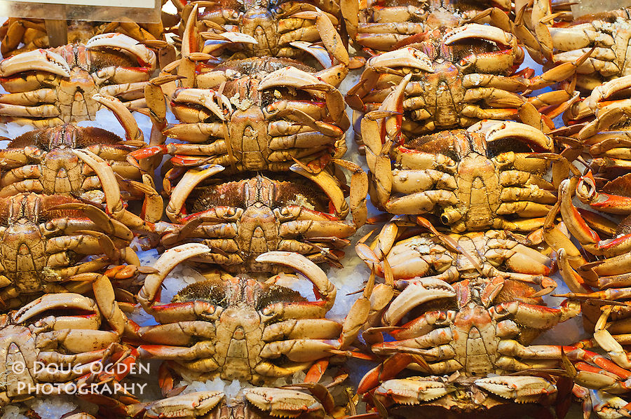Dungeness crab on display, Pike Street Market, Seattle, Washington.