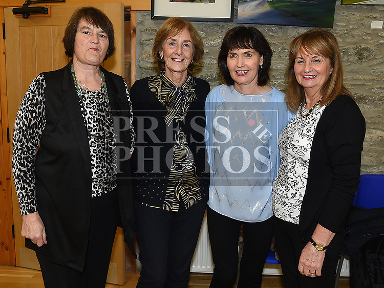 Ann Rogers, Marion McGovern, Kathleen healy and Margaret Fahy at the John Flood show in Drumshallon Forge. Photo:Colin Bell/pressphotos.ie