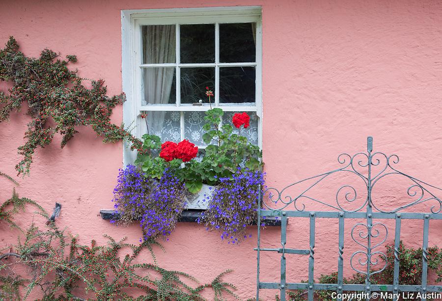 County Clare, Ireland: Bunratty Folk Park, colorful farmhouse wall with window box planter