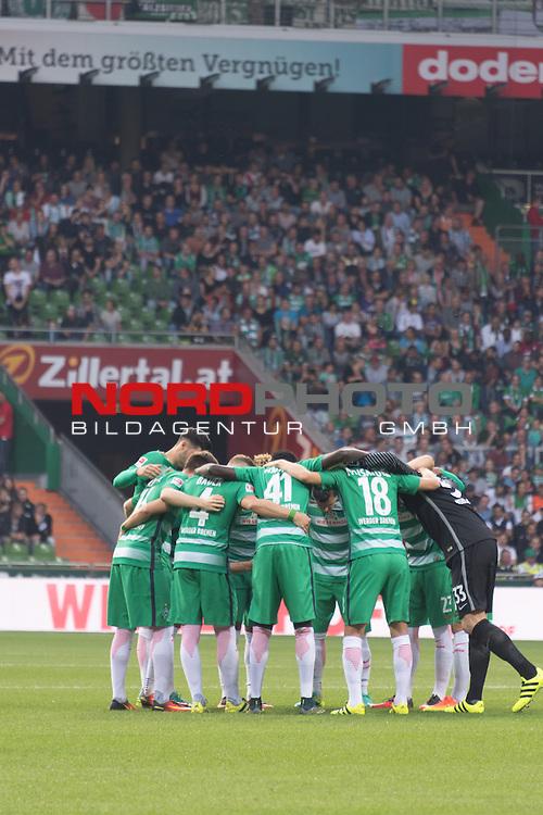 24.09.2016, Weser Stadion, Bremen, GER, 1.FBL, Werder Bremen vs VFL Wolfsburg, im Bild<br /> Mannschaftskreis vor dem Spiel<br /> Niklas Moisander (Bremen #18)<br /> Jaroslav Drobny (Bremen #33)<br /> <br /> Ousman Manneh (SV Werder Bremen U23 #47)<br /> Robert Bauer (Bremen #4)<br /> Florian Grillitsch (Werder Bremen #27)<br /> <br /> Foto &copy; nordphoto / Kokenge