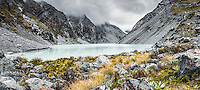Ice Lake, tranquil alpine lake in Southern Alps with garden of alpine plants, Westland National Park, West Coast, New Zealand