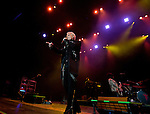 Billy Idol performs in concert in the Grand Sierra Resort's Grand Theatre on Friday night, August 7, 2015.