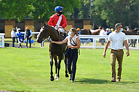 Winner of The AJN Steelstock Sovereign Stakes  Regal Reality ridden by Richard Kingscote and trained by Sir Michael Stoute is led into the Winners enclosure during Horse Racing at Salisbury Racecourse on 9th August 2020
