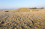 Bronze Age bowl barrow on Windmill Hill, a Neolithic causewayed enclosure, near Avebury, Wiltshire, England, UK