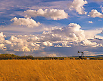 Oil Well, Field, and Sky..Northern Alberta..September 2005.               In a strange twist of economics, agriculture is being economically threatened by Alberta's booming oil ans gas industry. As a mjor producer of oil and gas, and with oil hitting record prices, this is causing the Canadian Dollar to the highest value in over fifty years. This makes the agricultural products much more expensive for our major market, the US, and this is causing a major economic downturn to all Canada's export markets...Copyright Garth Lenz. Contact: lenz@islandnet.com www.garthlenz.com