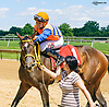 Rolling Mo winning at Delaware Park on 6/3/2017