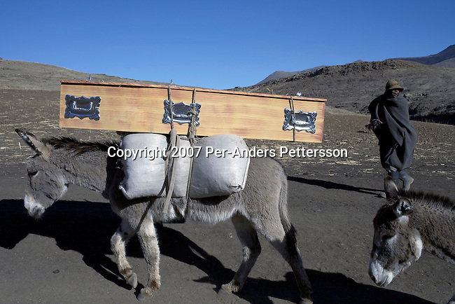 MOKHOTLONG, LESOTHO SEPTEMBER 24: A donkey carries a coffin to a rural village on September 24, 2007 in Mokhotlong, Lesotho. The owner bought it for an upcoming funeral. The country is struggling with an Aids epidemic, and an estimated quarter of the population is infected. About 100,000 children are orphaned by the disease. Lesotho is a small landlocked country entirely surrounded by South Africa, where many of the citizens travel to South Africa for work. .(Photo by Per-Anders Pettersson/Getty Images).