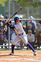 New York University Violets second baseman Ryan McLaughlin (21) at bat during a game against the Edgewood Eagles on March 14, 2017 at Terry Park in Fort Myers, Florida.  NYU defeated Edgewood 12-7.  (Mike Janes/Four Seam Images)