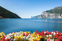 Italy, Trentino, Lake Garda, Torbole: Northern part of lake Garda | Italien, Trentino, Gardasee, Torbole: wenn der Ora und der Pelér Pause machen, ist der Nordteil des Sees auch für Anfänger ein beliebtes Surfgebiet