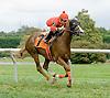 Ella Marie winning at Delaware Park on 9/29/12