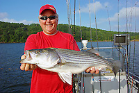Angler with striped bass caught in Lake Greeson, Arkansas