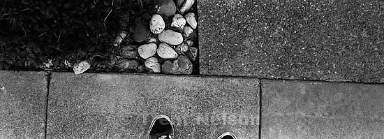 Trent feet and rocks, sidewalk in front of the Nelson house.<br />
