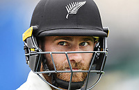 3rd December, Hamilton, New Zealand;  New Zealand captain Kane Williamson day 5 of the 2nd test cricket match between New Zealand and England at Seddon Park, Hamilton, New Zealand.