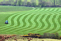 The recent spell of dry weather has encouraged farmers to get on the land. Here grass is rolled in anticipation of turn-out in the Loud Valley area of Lancashire.