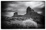 Tumbleweed and Buttes in the Valley of the Gods