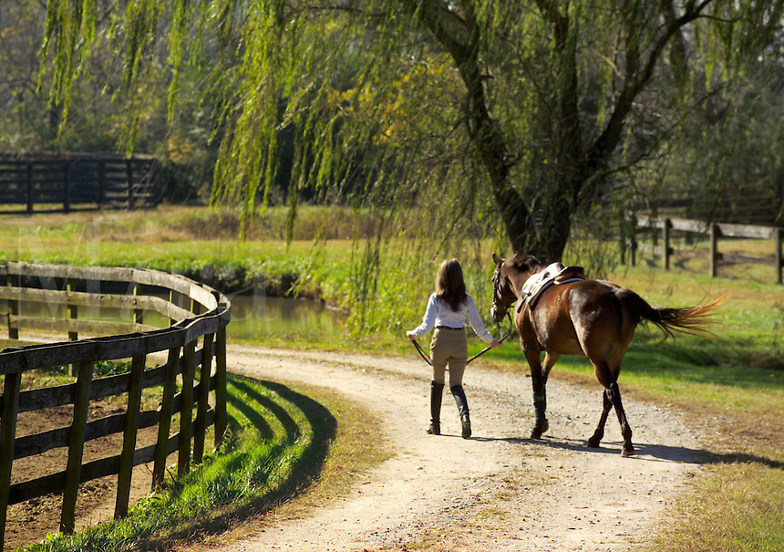 Young woman walks with horse under massive live oak tree.