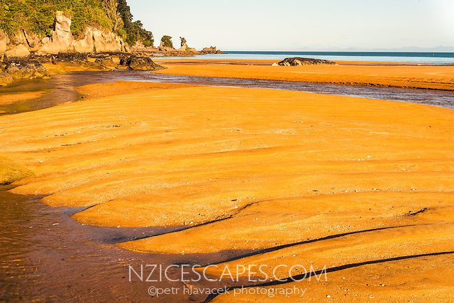 Saturated orage colours and patterns of stunning Totaranui beach on Abel Tasman Coast Track enhanced by setting sun, Abel Tasman National Park, Nelson Region, South Island, New Zealand